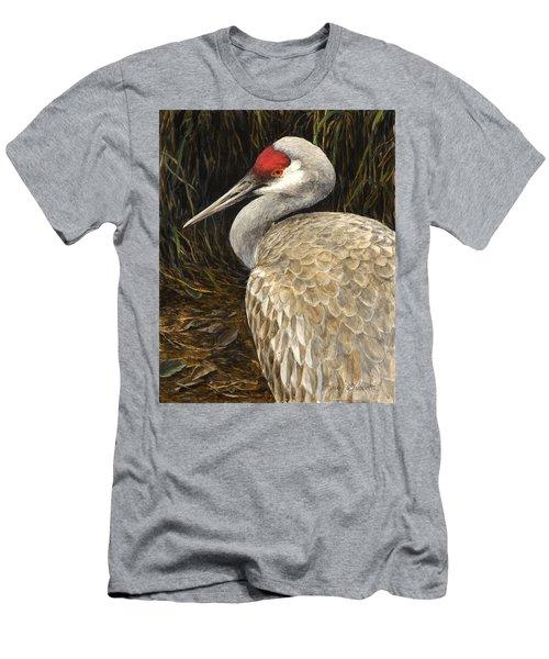 Sandhill Crane - Realistic Bird Wildlife Art Men's T-Shirt (Athletic Fit)