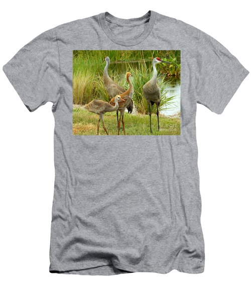Sandhill Cranes On Alert Men's T-Shirt (Athletic Fit)