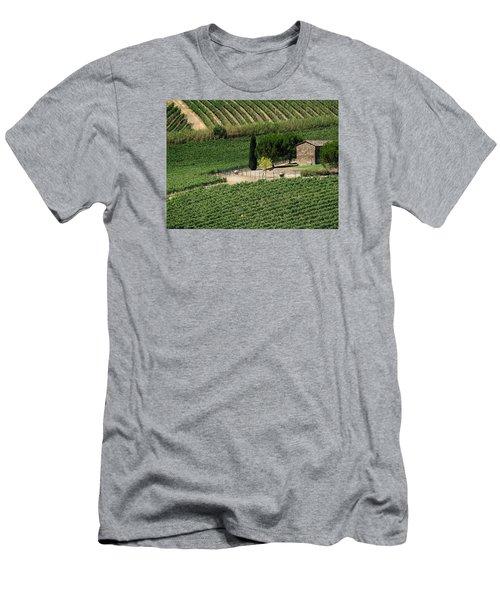 Sangiovese Vineyard Men's T-Shirt (Athletic Fit)