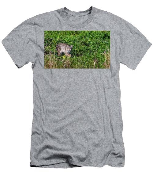 Scars Stalk  Men's T-Shirt (Athletic Fit)