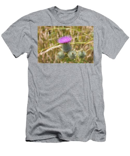 Scottish Thistle Men's T-Shirt (Athletic Fit)