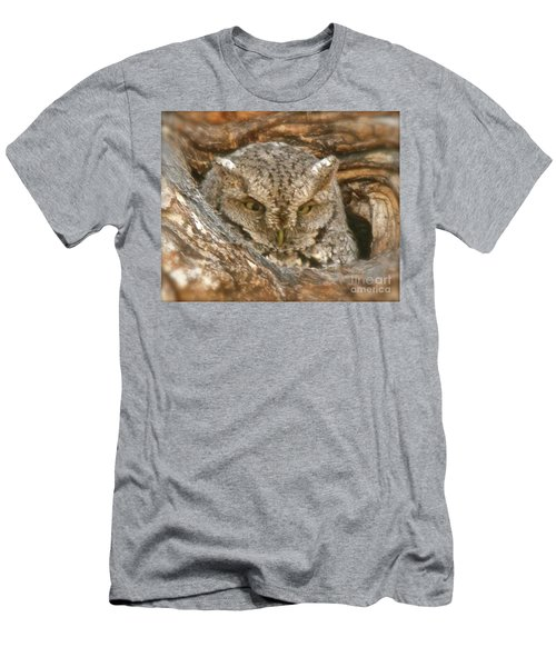 Screech Owl On Spring Creek Men's T-Shirt (Athletic Fit)