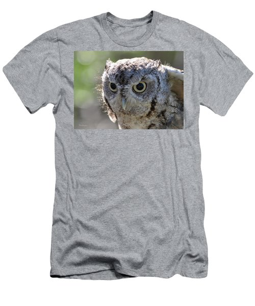 Screechowl Focused On Prey Men's T-Shirt (Athletic Fit)