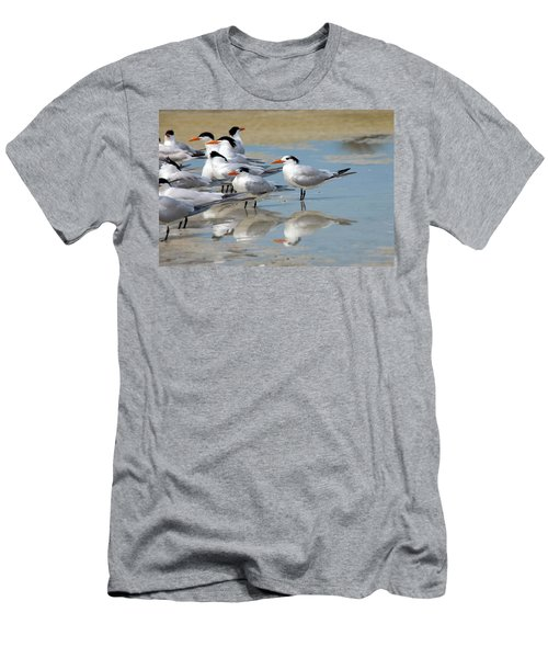 Sea Birds Men's T-Shirt (Athletic Fit)
