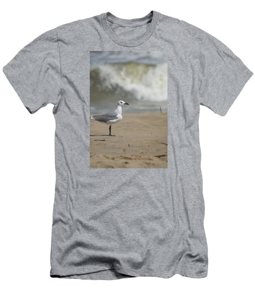 Men's T-Shirt (Slim Fit) featuring the photograph Sea Gull by Heidi Poulin