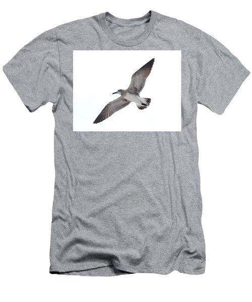 Sea Gull Men's T-Shirt (Athletic Fit)