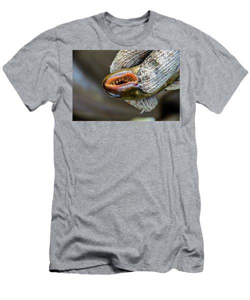 Sea Lamprey Men's T-Shirt (Athletic Fit)