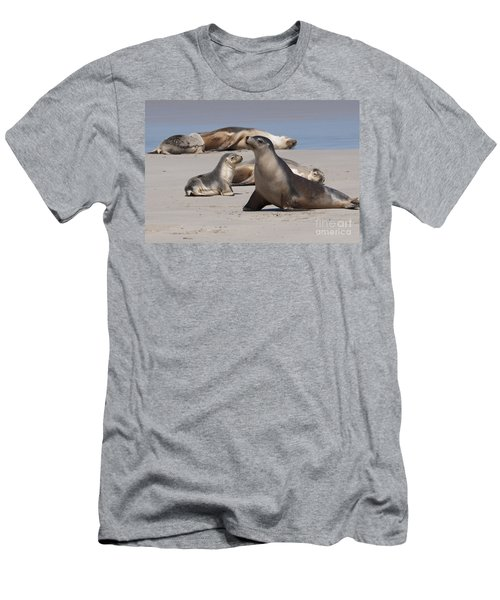 Men's T-Shirt (Slim Fit) featuring the photograph Sea Lions by Werner Padarin