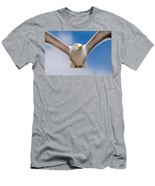 Seabird Closeup Men's T-Shirt (Athletic Fit)