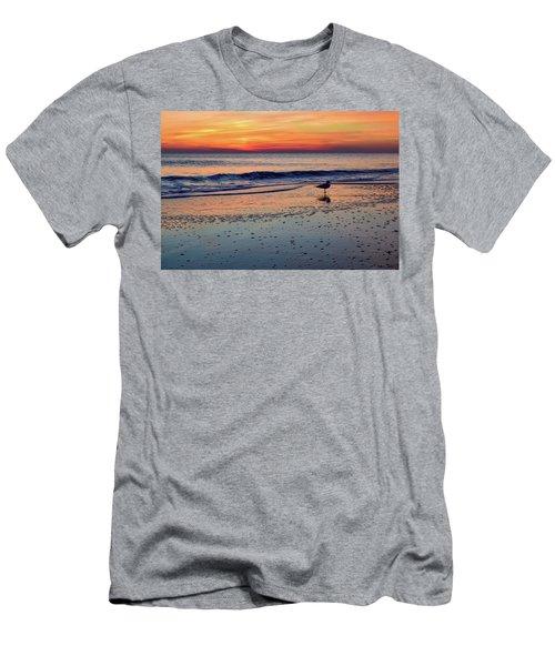 Seagull At Sunrise Men's T-Shirt (Athletic Fit)