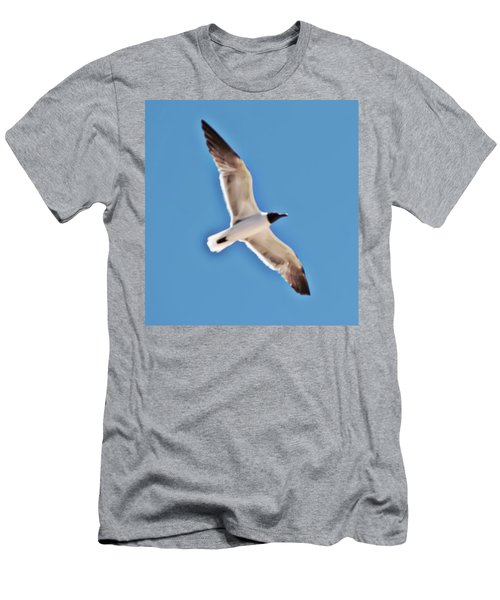 Seagull In Flight Men's T-Shirt (Slim Fit) by Gina O'Brien