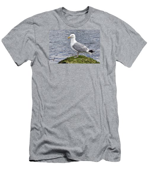 Men's T-Shirt (Slim Fit) featuring the photograph Seagull Posing by Glenn Gordon