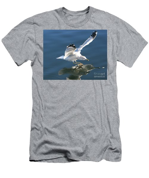 Seagull Reflection Men's T-Shirt (Slim Fit) by Rod Jellison