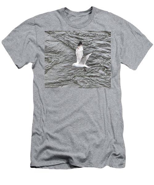 Seagull Sea Men's T-Shirt (Slim Fit) by Yury Bashkin