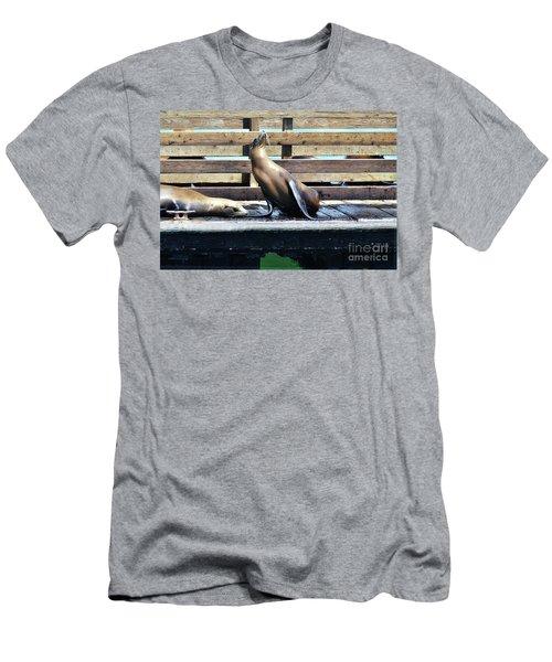Seal Cheerleader Men's T-Shirt (Athletic Fit)