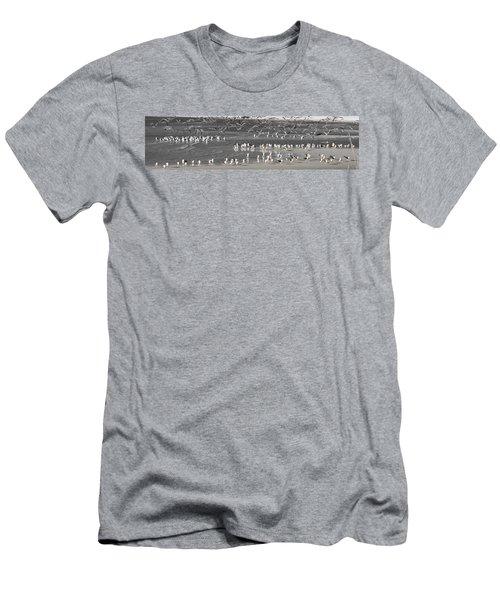 Seascape Gulf Coast, Ms F10d Men's T-Shirt (Athletic Fit)