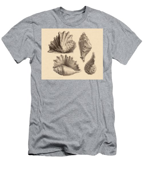 Men's T-Shirt (Athletic Fit) featuring the painting Seba's Spider Conch by Judith Kunzle