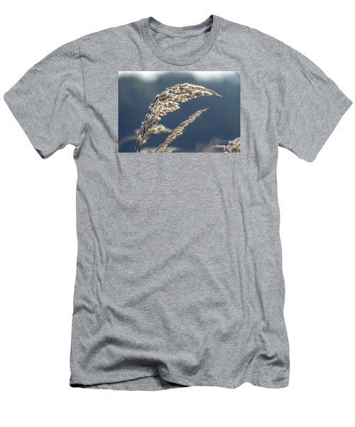 Men's T-Shirt (Slim Fit) featuring the photograph Sedge Grass by Odon Czintos