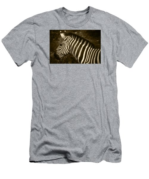 Sepia Zebra Men's T-Shirt (Athletic Fit)