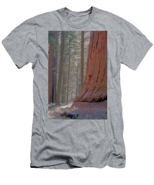 Sequoia Men's T-Shirt (Athletic Fit)