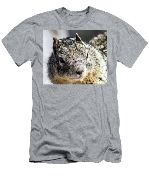 Serious Squirrel Men's T-Shirt (Athletic Fit)