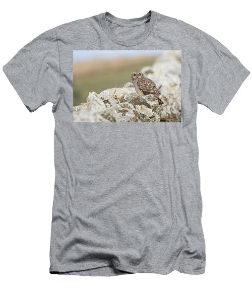 Short-eared Owl In Cotswolds Men's T-Shirt (Athletic Fit)
