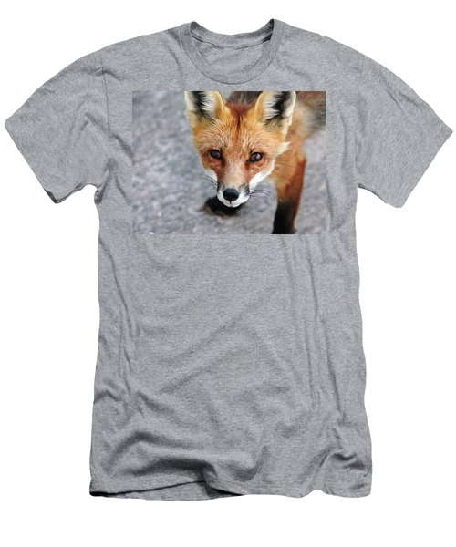 Men's T-Shirt (Slim Fit) featuring the photograph Shy Red Fox  by Debbie Oppermann