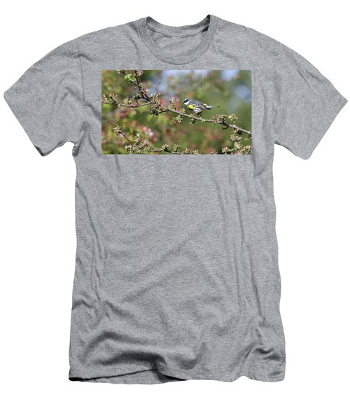 Signs Of Spring Men's T-Shirt (Slim Fit) by Stephen Flint