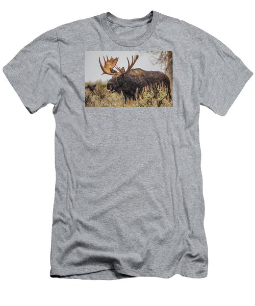 Silly Moose  Men's T-Shirt (Athletic Fit)