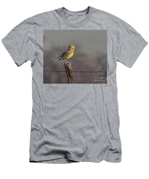 Singing Warbler Men's T-Shirt (Athletic Fit)