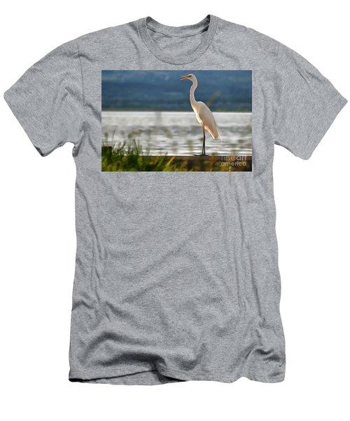 Singing White Egret Men's T-Shirt (Athletic Fit)