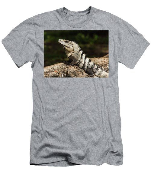 Sir Iguana Mexican Art By Kaylyn Franks Men's T-Shirt (Athletic Fit)