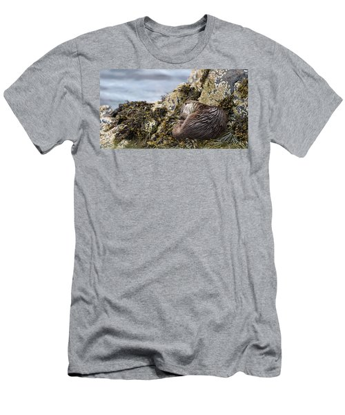 Sleeping Otter Men's T-Shirt (Athletic Fit)