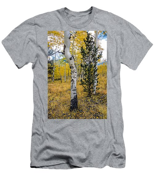 Slightly Crooked Aspen Tree In Fall Colors, Colorado Men's T-Shirt (Slim Fit) by John Brink