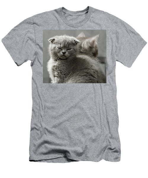 Men's T-Shirt (Slim Fit) featuring the photograph Slumbering Cat by Evgeniy Lankin