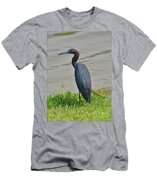 Men's T-Shirt (Slim Fit) featuring the photograph Small Blue Heron by Carol  Bradley