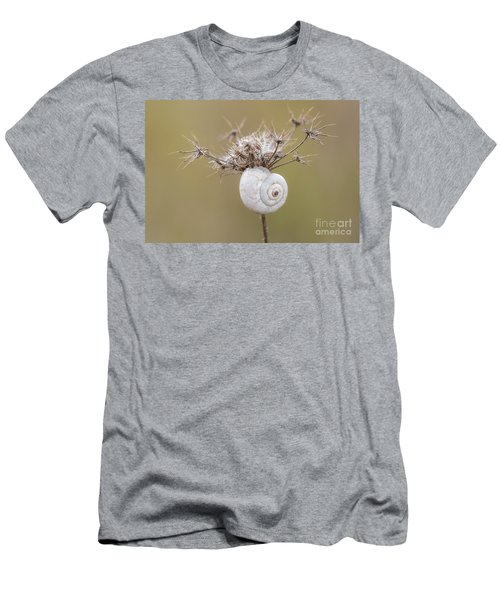 Small Snail Shell Hanging From Plant Men's T-Shirt (Athletic Fit)