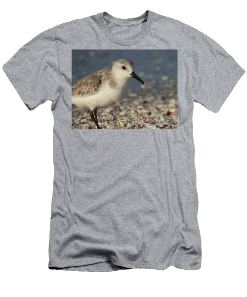 Smallest Bird Men's T-Shirt (Athletic Fit)