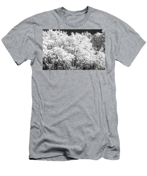 Snow And Frost On Trees In Winter Men's T-Shirt (Slim Fit) by John Brink