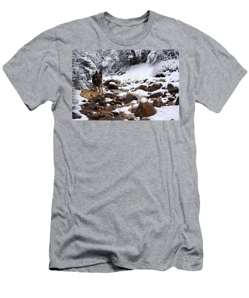 Snow Cup Men's T-Shirt (Athletic Fit)