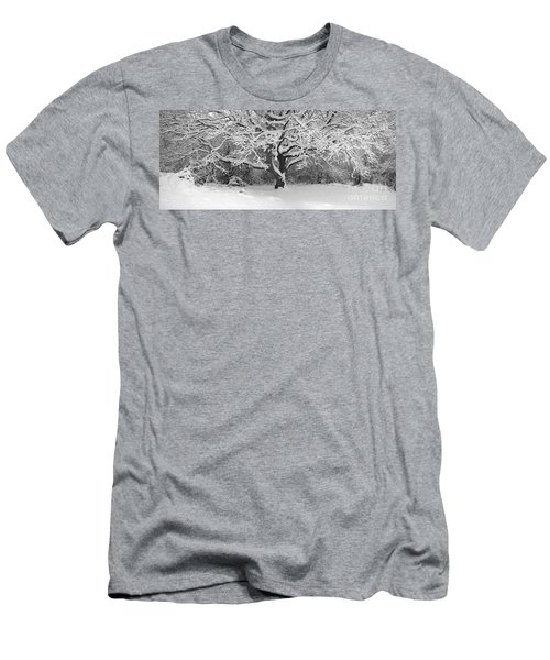 Snow Dusted Tree Men's T-Shirt (Athletic Fit)