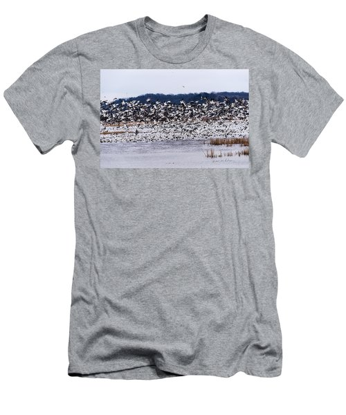 Snow Geese At Squaw Creek Men's T-Shirt (Slim Fit) by Edward Peterson
