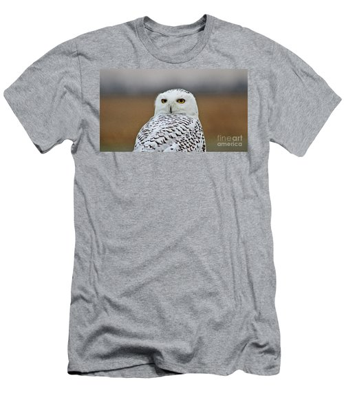 Snow Owl Strare Men's T-Shirt (Athletic Fit)