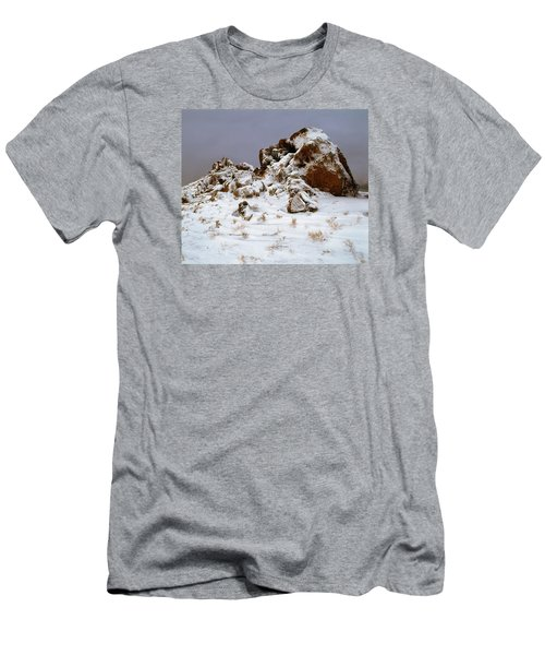 Snow Stones Men's T-Shirt (Athletic Fit)