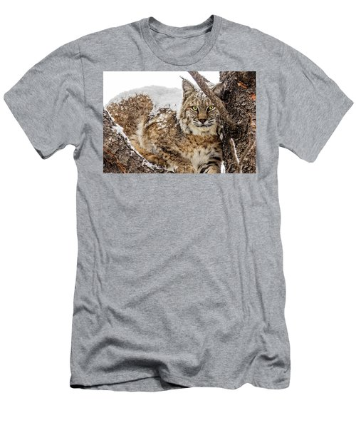 Snowy Bobcat Men's T-Shirt (Athletic Fit)