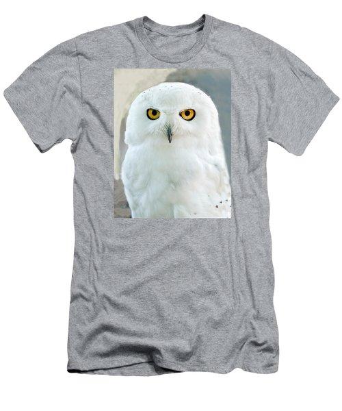 Snowy Owl Portrait Men's T-Shirt (Athletic Fit)