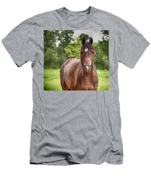 Soft Summer Rain Men's T-Shirt (Athletic Fit)