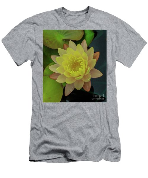 Softly Pink And Yellow Lilly Men's T-Shirt (Athletic Fit)