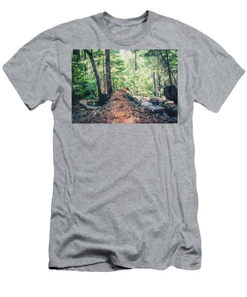 Somber Walk- Men's T-Shirt (Athletic Fit)