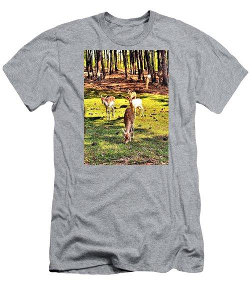 Something This Way Cometh Men's T-Shirt (Slim Fit) by James Potts